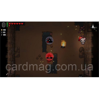 The Binding of Isaac: Afterbirth + DLC (XBOX ONE)